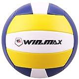 WIN.MAX Beachvolleyball,Volleyball,Beach und Funball Größe 5 Weicher Ballkontakt (Blau/Gelb)